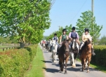 Ride a Horse through Beautiful Kildare Countryside