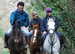 Ride a Horse through Beautiful Kildare Countryside - for Two