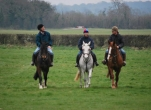 Family Horse Riding Experience for 2 Adults and 2 Children