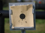 Air Rifle Shooting Experience - 50 Bird Shoots