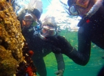 Snorkelling Session with Adventure West