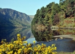 National Parks Tour for Two - Explore National Parks of Ireland in 8 days