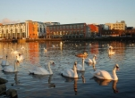 Limerick City Kayaking Tours for Two